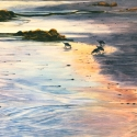 Protected Shoreline - SOLD